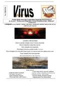 VIRUS nr 3-2015-2016